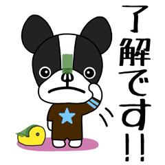[LINEスタンプ] 【毎日使える】ワンダフル!!