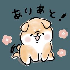 [LINEスタンプ] かまってほしい犬