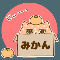[LINEスタンプ] ブサかわ猫さんのスタンプ