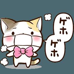 リボンと三毛猫【体調&応援編】