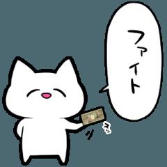 お金で解決するネコ