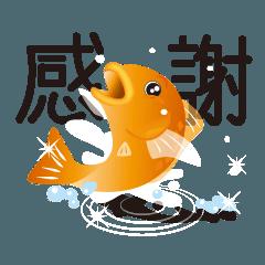 泳ぐ金魚。はねる金魚。