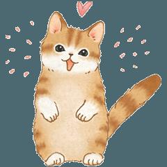 ともだち☆猫たちのスタンプ