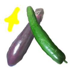 【お野菜】きゅうり、なす、にんじん