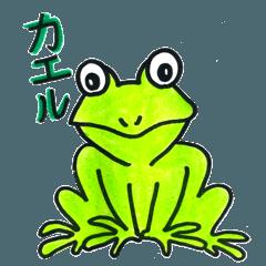 田舎のカエル