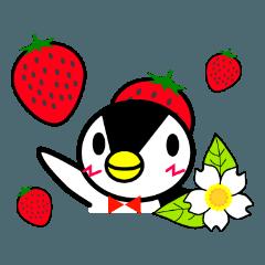 いちごペンギン