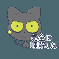 ねこのビヨーク【エンジニア編】