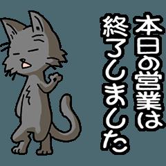 猫大好き!その29d(黒猫)